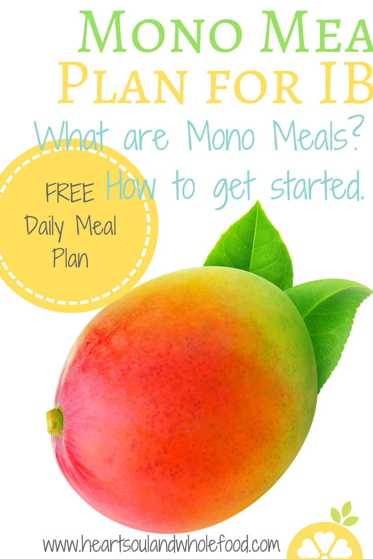 Mono Meals Plan to help with IBS - The Fun Sized Life